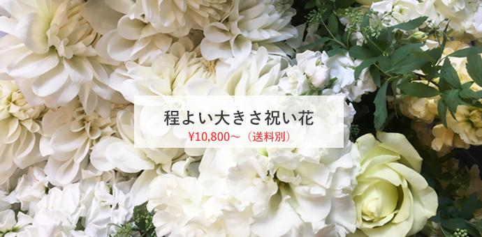程よい大きさ祝い花 ¥10800(送料別)