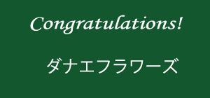 カラー地:緑色+400円(税込)