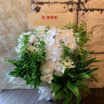shuniniwai-arrangement-orchid