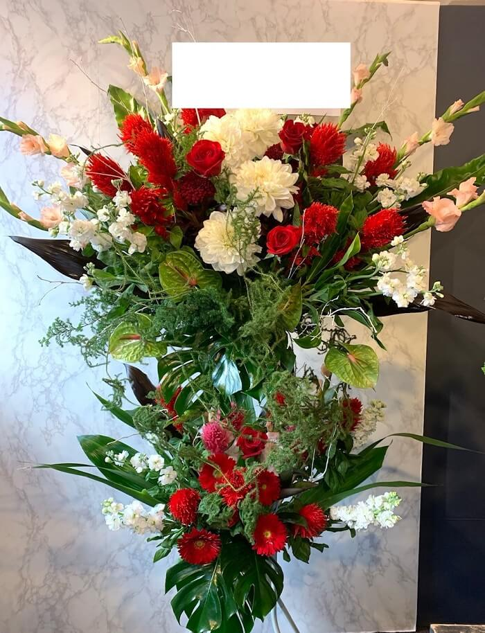 standflower-red