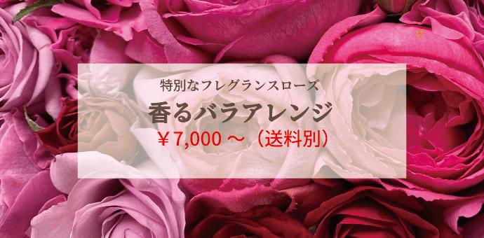 バラアレンジ ¥7000〜(送料別)