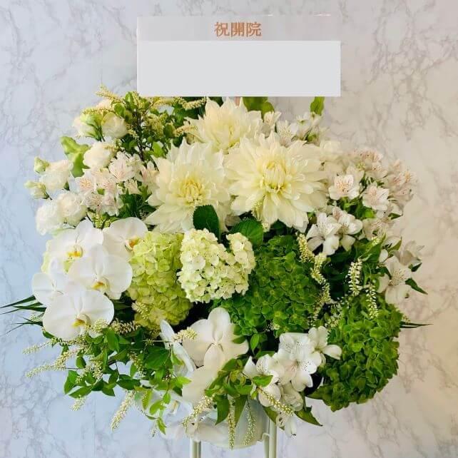 standflower-white-clinic