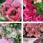 pinkflowers_s
